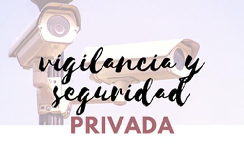 Convocatoria 2019 Vigilancia y seguridad