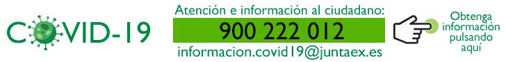 Informacion Covid 19